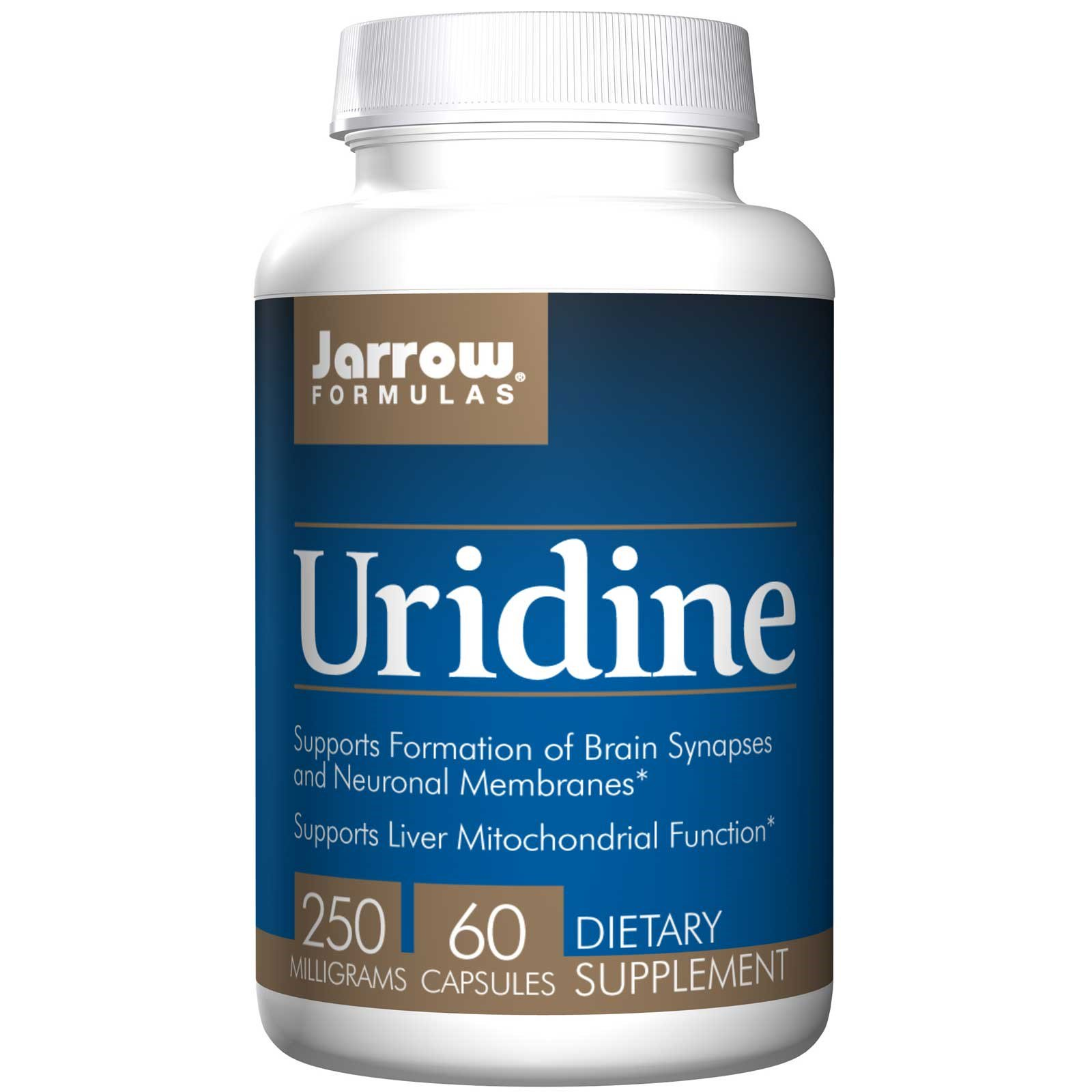 Uridine injection: A powerful addition for synaptic plasticity
