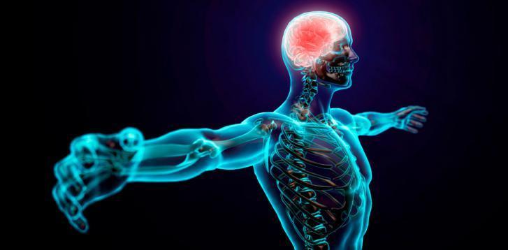 Best Nootropics of 2021: 3 Most Popular Smart Drugs For Brain